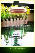 900ml Transparent glass Airtight bottle