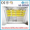 1056 chicken eggs bird export AI-1056II in promotion