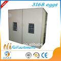 Ce/iso9001 aprobados grandes de alta calidad incubadora para la venta