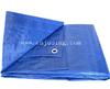 tarpaulin pe plastic sheet waterproof cover supplier