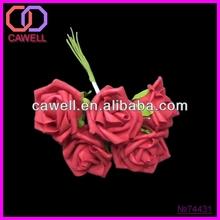 red rose flower photos