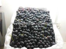 Australian Fresh Grapes