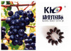 High Purity Opc Grape Seed Extract GMP/ISO9001/HACCP Certificated