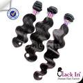 De calidad superior del pelo humano Clip en la extensión del pelo todos los colores están disponibles Color mezclado Clip en la extensión del pelo