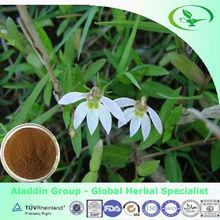 Chinese Lobelia herb extract for healthcare supplement /Herba Lobeliae Chinensis Extract
