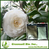 100% Natural plant extract CAMELLIA SINENSIS LEAF EXTRACT