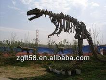 Museum Dinosaur skeleton excavation kit