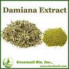 High quality Damiana extract 4;1 10:1 20:1 (UV)