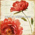quadro dipinto ad olio di fiori rossi