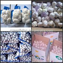from China Garlic City / 2014 new white garlic