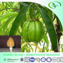 100% Natural Lose Weight Medicine Organic Garcinia Cambogia