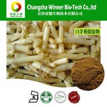 100% naturaleza imperata cylindrica de raíz extracto en polvo