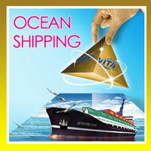 Profession door to door ocean freight from Shanghai to Jeddah---Matilda