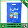 Eco frendly plastic shopping bag