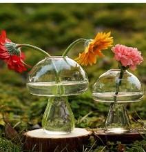 Mushroom Glass vase for home decoration . Flower vase for table