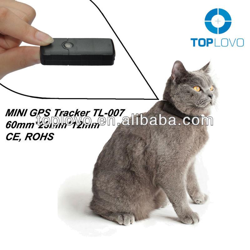 Gps для кошек