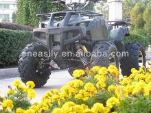 Big Big World Electric ATV 1500w-3000W Quads