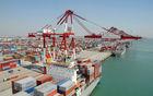 Cheap International ocean freight from shenzhen/HongKong China to Burgas--Frances