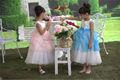Nova chegada! 2014 nova moda princesa crianças angélico crianças dança vestido meninas
