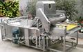 di oliva in acciaio inossidabile macchina di pulizia