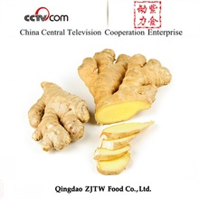 200-250G 30LB Packing Fresh Ginger Buyers