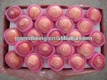 2014 Wholesales China huaniu apple