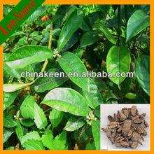Morinda Root Extract& Radix Morindae Officinalis Extract 10:1