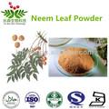 100% natural del neem extracto de hoja de