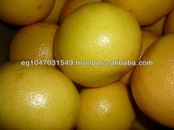 fresh grape fruit