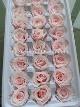 long lasting fresh cut flowers high quality Light Pink Roses