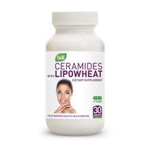 Ceramides with Lipowheat