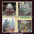 chicken cage equipment &automatic chicken cage for poultry farm