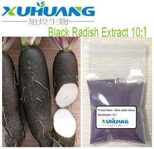 Black Radish Extract 5:1 / 10:1 powder