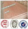 cheap plywood sheet