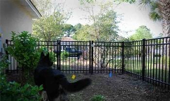 wholesale dog kennels (BSD-G1)