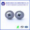 m3*10 metric zinc phillips washer head decorative screw with plastic head