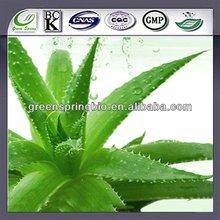 Manufacturer wholesale bebida de aloe vera con pulpa ! Aloe Vera P.E ! raw materials !