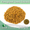 Fenugreek Extract Powder (L-4-Hydroxyisoleucine) in hot selling