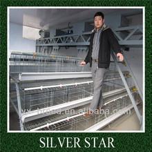 Q235 international bridge steel bird cages for sale cheap