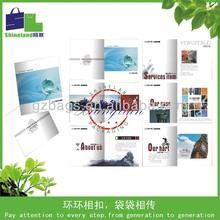 leaflet and flyer/folded leaflet brochure printing