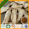 Radix Angelicae Sinensis/Chinese herb Angelica sinensis/danggui