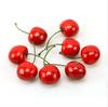 Lifelike Decorative Plastic Artificial Cherry Home Decor
