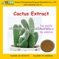 природных экстракт кактуса hoodia порошок