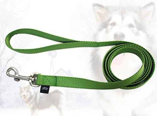 Automatic green dog leash pet leads
