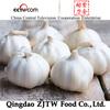 Bulk Fresh Wholesale Natural Garlic On Sale
