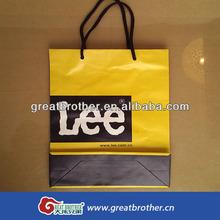 paper/plastic shopping/cosmetic bag