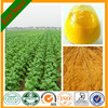 Nicotiana tabacum extract/Best solanesol extract 90%