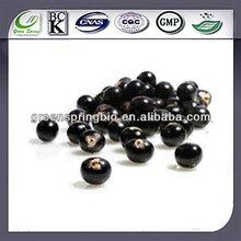 Natural Fruit Powder ! Manufacturer Wholesale ! Acai Berry Powder ! Herbal Medicine