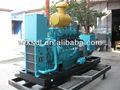 150kw erdgas/LPG/cng-generator