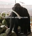la escultura de mamut para modelo de los elefantes de la educación